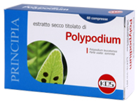 Polypodium 60 compresse